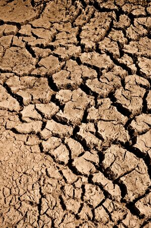 Cracked and Arid Ground Dry without water Stock Photo - 7195899