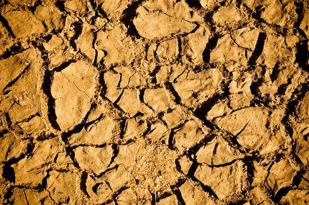 Cracked Dirt Mud Arid Ground photo