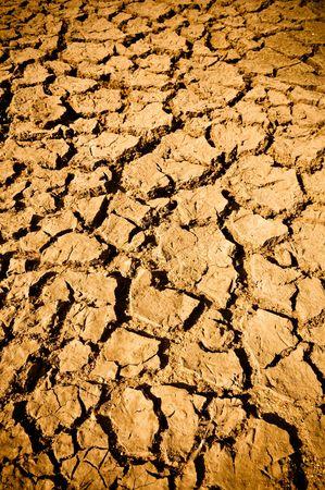 Cracked Dirt Mud Arid Ground Background photo