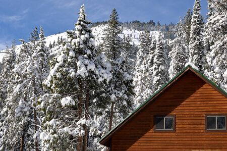 Winter Cabin with Snow Covered Trees and Mountain in Background photo