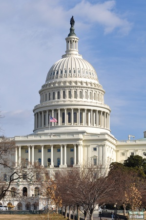 congressional: Washington DC United States Capitol in Winter