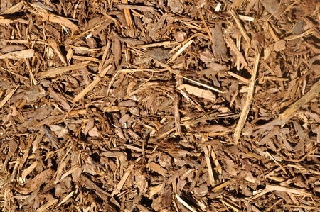 Mulch Background photo