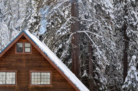 Cabin in the Snow photo
