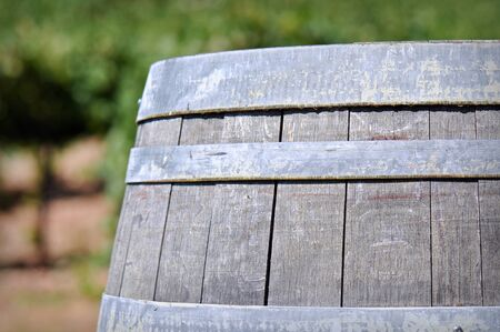 Wine Barrel in the Vineyard Stock Photo - 12652137