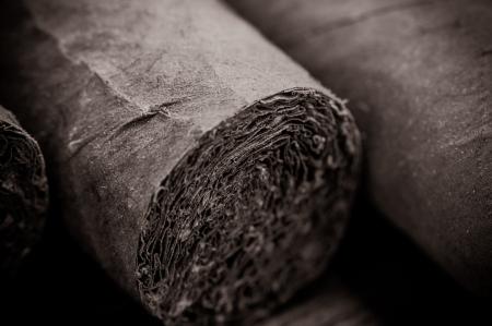 Cigar Close Up Lizenzfreie Bilder
