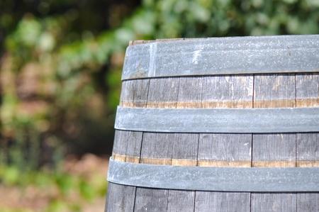 napa: Wine Barrel and Vineyard in Background