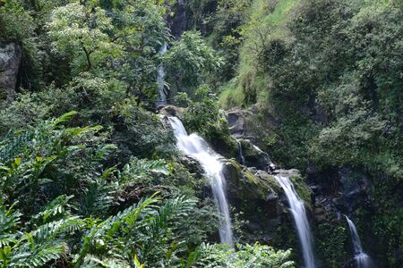 Waterfall in Maui Hawaii photo