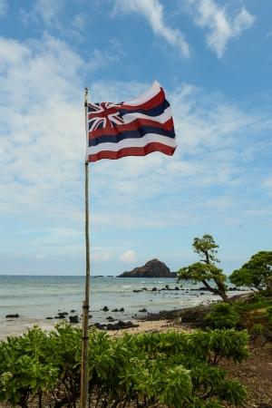 hawaii flag: Hawaii State Flag