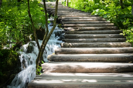 plitvice: Wooden Hiking Path or Trail in a Forest Stock Photo