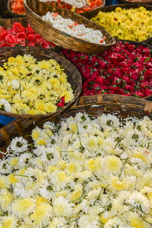 Mums and Roses for Sale in India photo