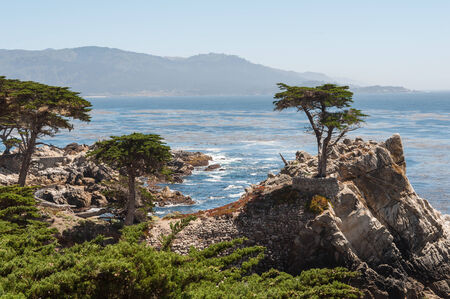 california coast: Costa de California, cerca de Carmel