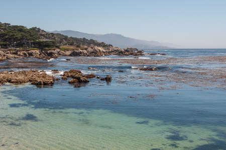 monterey: California Coast in Monterey