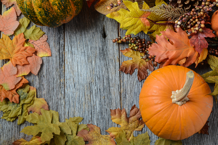 Autumn Pumpkins surrounded by leaves photo