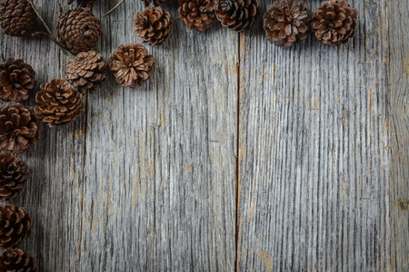 Pine Cone on Rustic Wood Background photo
