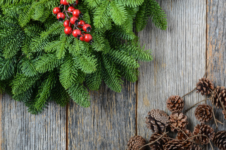 Tree branch with Holly Berry and pine cones on rustic wooden background used for christmas decoration Imagens