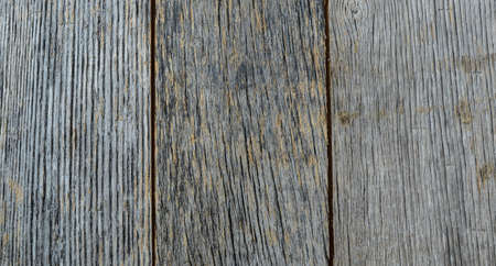 Rustic Blue Wood Background photo