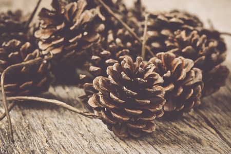 Pinecones on Rustic Wood Background Stock Photo