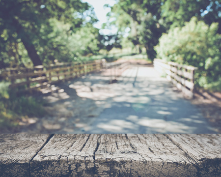 bridge in nature: Blurred Nature Background with Bridge applying Style Filter