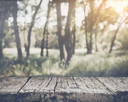 Blurred Nature Background