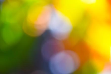 Autumn Blurred Background Stockfoto