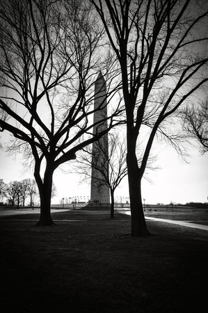 Washington Monument in the Winter