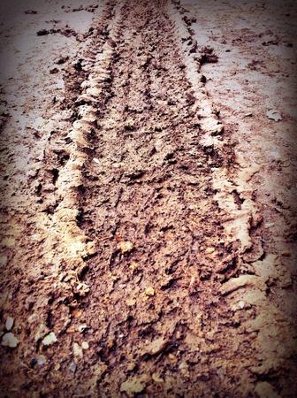 muddy: Muddy