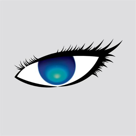 blue eyes: Blue eyes vector Illustration
