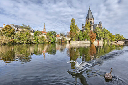 Temple Neuf de Metz reflecting in water with white swan on foreground, Metz, Lorraine, France