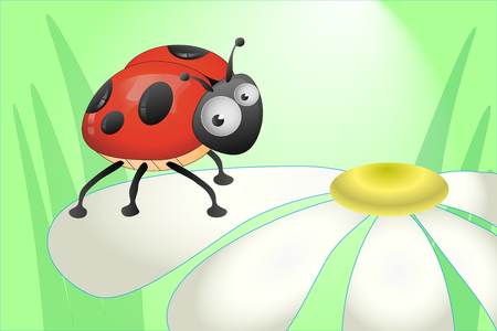 ladybug: Ladybug sitting on a chamomile petal on green background