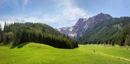 Panoramic view of glade in the Small Meadow Valley in Tatra mountains, Poland Standard-Bild