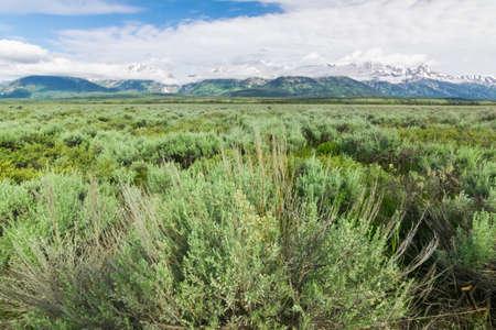 広いグランド ・ ティトン国立公園の眺め