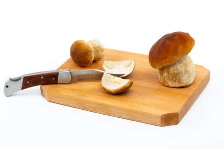 zakmes: Boletus edulis mushrooms on wood cutting board and white isolated background, with pocket knife