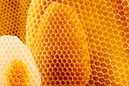 Yellow and white honeycomb background, beeswax Stock Photo - 30981086