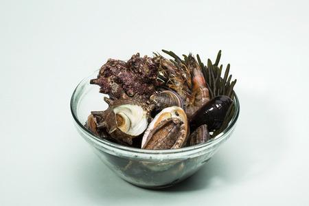 seaweeds: Seafood