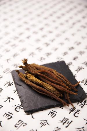 Oriental antiguo  libro tradicional Foto de archivo