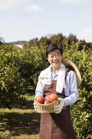 Middleaged Asian Farmer Smiling and Holding a Basketful of Apples on Field