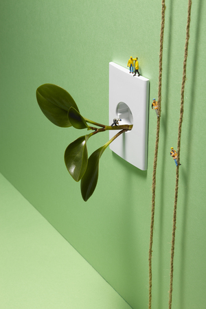Plant plugged into an electrical outlet