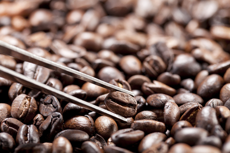 Coffee beans and a tweezer