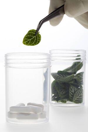 Lab-grown plants