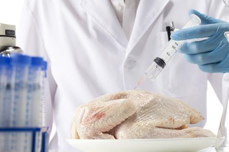 GMO chicken Stock Photo