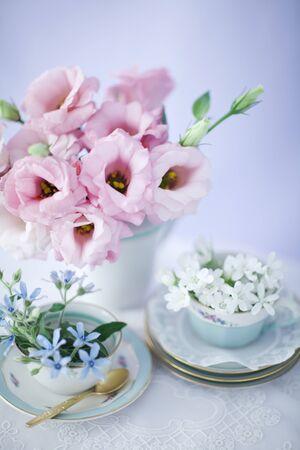 Indoor Shot Of Flowers