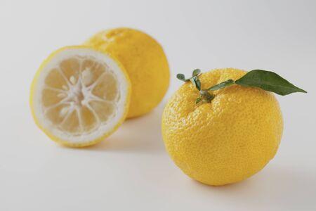 citrons: Up-Close Studio Shot Of Citrons