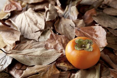 beauty shot: Close-Up Beauty Shot Of Persimmons