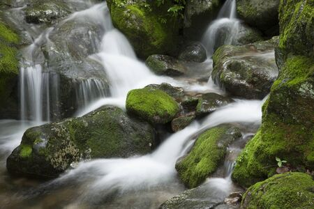 water flowing: South Korea, Gangwon-do, Moss valley, Stream, Flowing Water, Waterfall