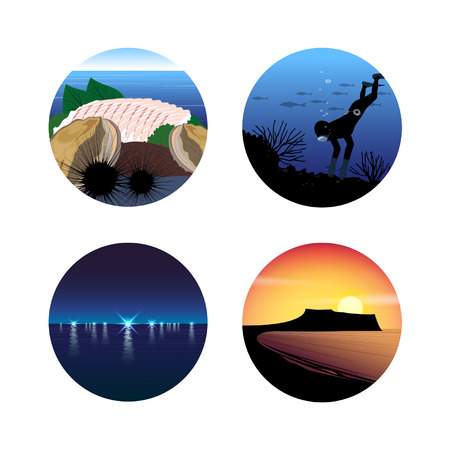 heal new year: Summer Holiday Icon Set