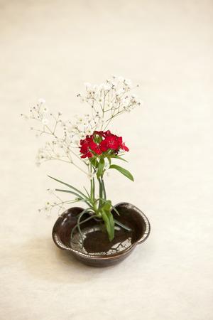ikebana: Flower, Ikebana,