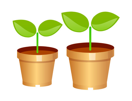 vector icon sprout plant