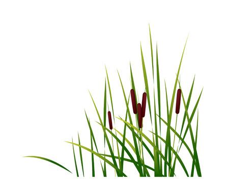 icon leaf Ilustração