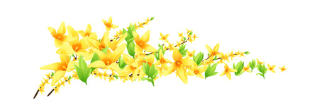forsythia: icon flower