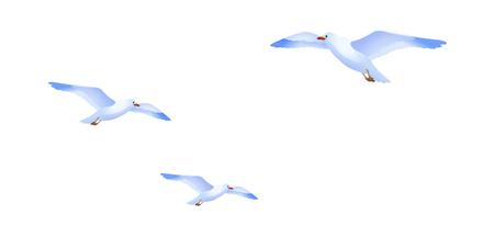 icon sea gull Illustration